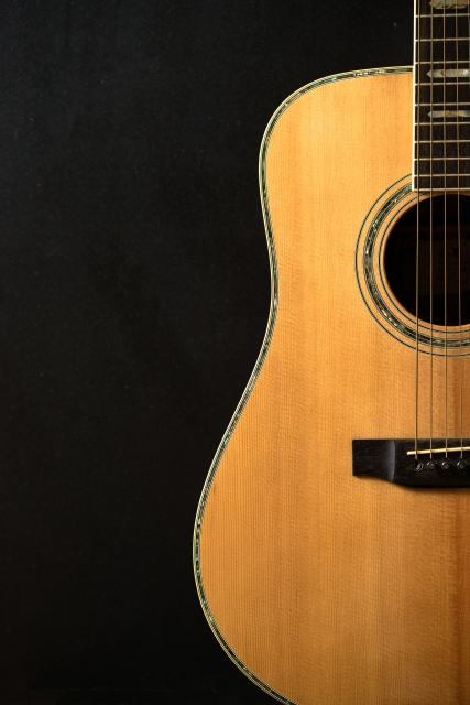 エレキとアコギ、ギター初心者にはどっちがいい?難易度の違い?